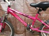 Girls Mountain Bike- Excellent Condition, Daughter Rode Once